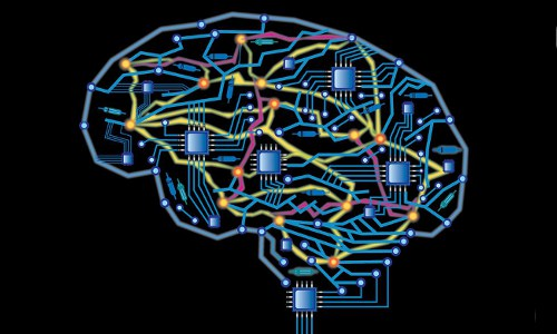 brain circuitry, illustration